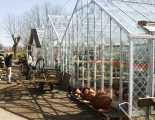 Rosendals Trädgårdar (växthus)